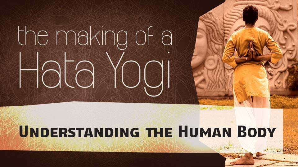Making-of-Hata-Yogi-Understanding-the-Human-Body