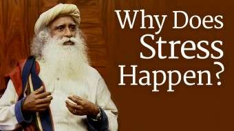 Why Does Stress Happen?
