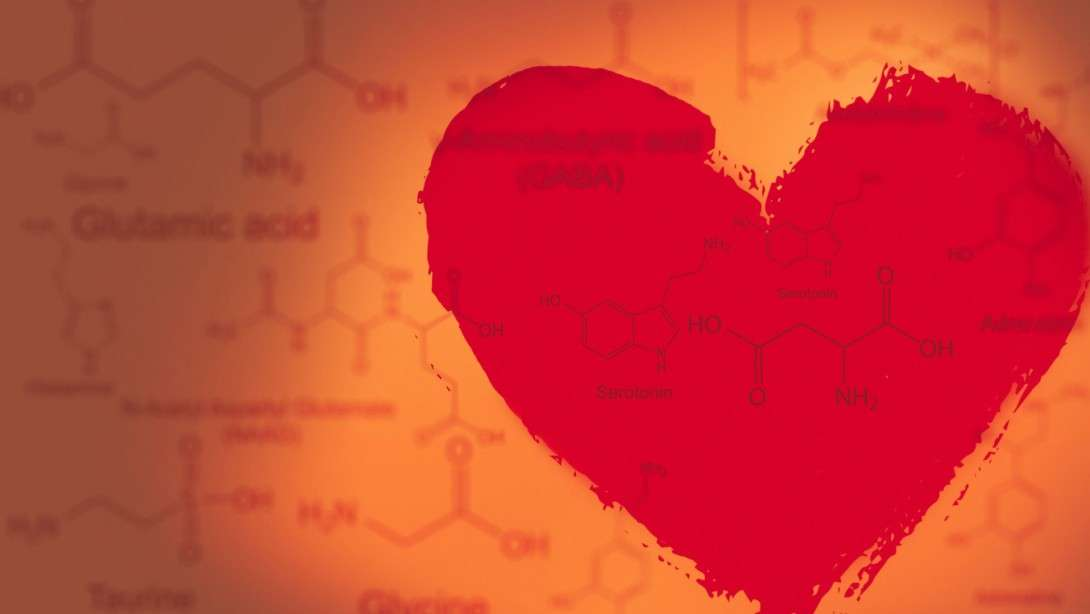 From Chemistry to Love And Vice Versa