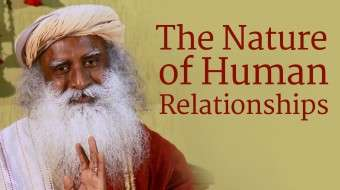 The Nature of Human Relationships