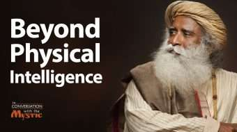 Beyond Physical Intelligence