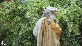 Feeling Worthless? Sadhguru on Usefulness in Life