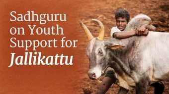 Sadhguru on Youth Support for Jallikattu