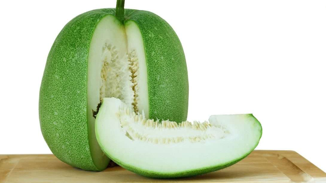 "Ash Gourd (Winter Melon), the ""Cool"" Vegetable: Benefits & Recipes"
