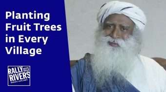 Planting Fruit Trees in Every Village
