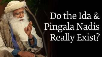 Do the Ida and Pingala Nadis Really Exist?